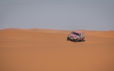 De woestijn kleurt weer roze!